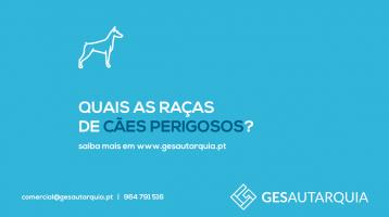 Quais as raças de cães considerados potencialmente perigosos?